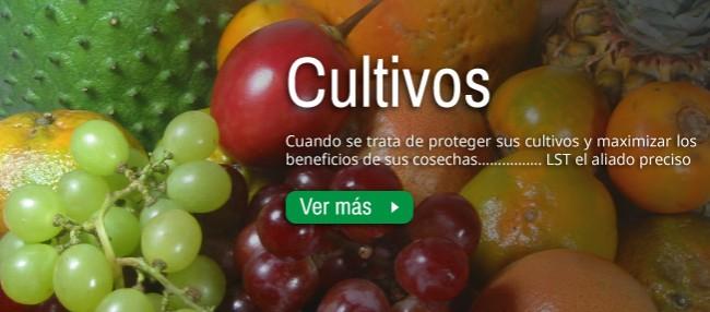 Foto-Banner-Superior-Inicio---Cultivos.jpg